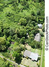 tropikalny, miejski, antena, powierzchnia