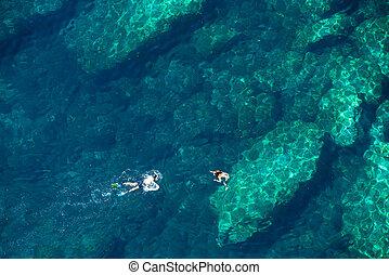tropikalny, morze, para, woda, nad, snorkeling, prospekt