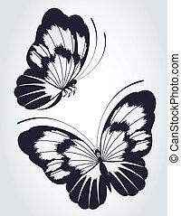 tropikalny, motyl