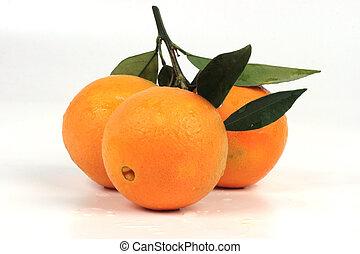 tropikalny owoc