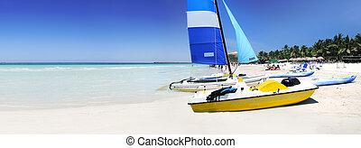 tropikalny, panorama, plaża
