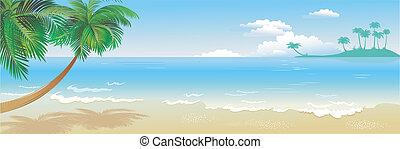 tropikalny, panoramiczny, plaża, dłoń