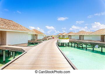 tropikalny, pojęcie, wyspa, urlop, woda, malediwy, wille, tło, święto, rano