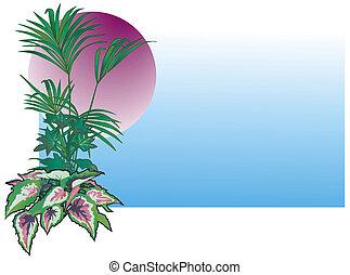 tropikalny, rośliny, ilustracja