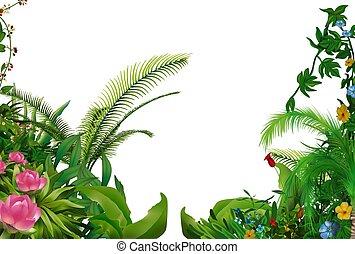tropikalny, rośliny