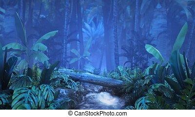 tropikalny, strumyk, dżungla, noc