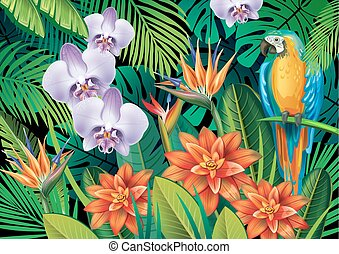 tropikalny, tło, egzotyczne kwiecie