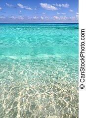 tropikalny, turkus, karaibski, jasny polewają, plaża