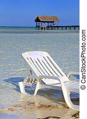 tropikalny, uciekanie się, plaża