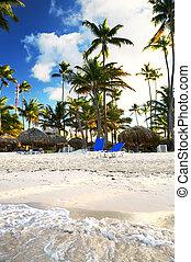 tropikalny, uciekanie się, plaża, piaszczysty