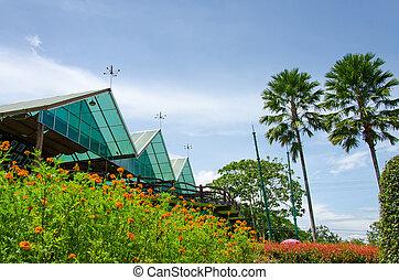 tropikalny, willa, z, piękny, ogród