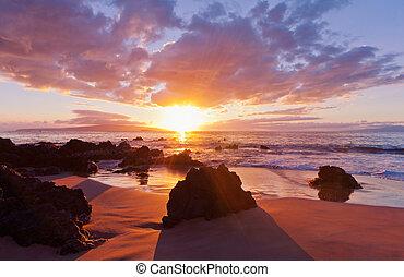 tropikalny, zachód słońca, hawajczyk