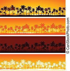 tropikalny, zachód słońca, tło