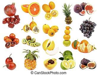 tropikalny, zbiór, owoce