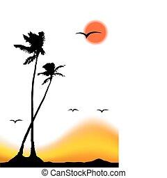 tropikus, árnykép, pálma, napnyugta