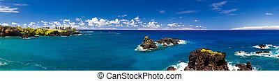 tropikus, óceán, partvonal, hawaii