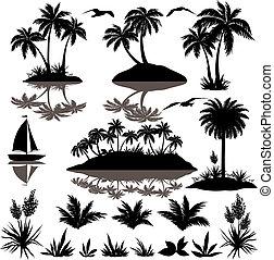tropikus, körvonal, állhatatos, horgonykapák