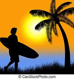 tropikus, napnyugta, árnykép, hullámlovas