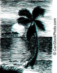 tropikus, nyár, vektor, pálma, ábra