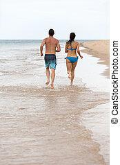 tropikus, párosít, tengerpart, futás