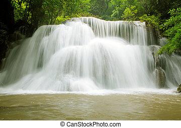tropikus, vízesés, erdő, eső