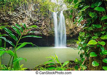 tropikus, vízesés