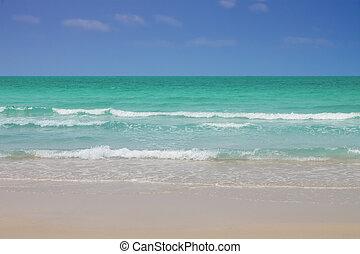 tropikus, világos víz, tengerpart.