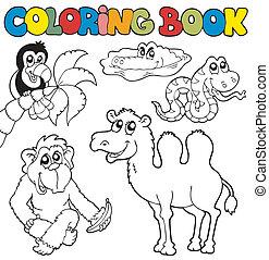 tropique, 3, coloration, animaux, livre