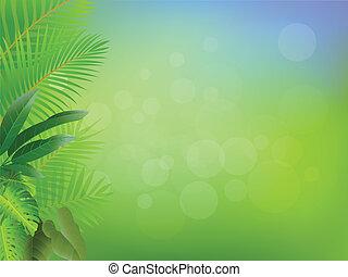 tropisch bos, achtergrond