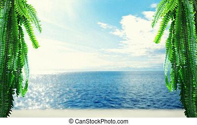 tropisch eiland, strand, zee, hemel, en, palm, branches.,...