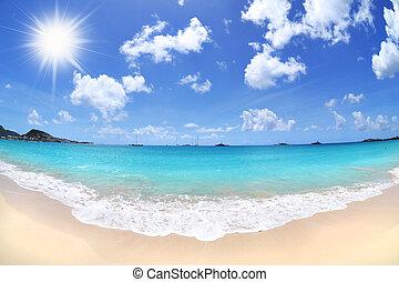 tropisch paradijs