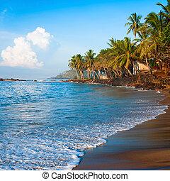 tropisch paradijs, strand, op, sunsise, licht