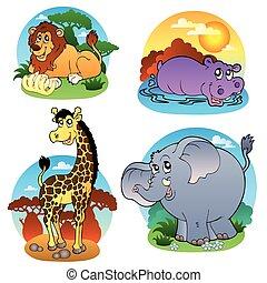 tropische , 1, gevarieerd, dieren