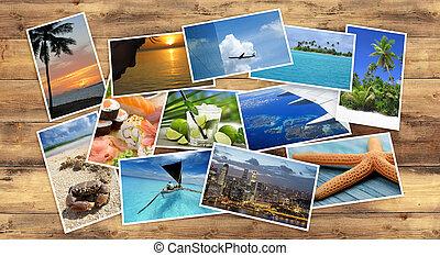 tropische , beelden, verzameling