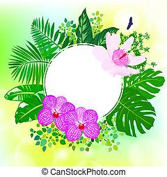 tropische , bladeren, bloemen, palm, banaan, kaart