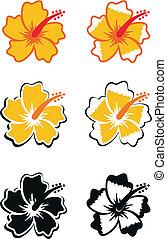 tropische bloem, set1