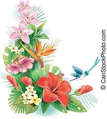 tropische bloemen, regeling