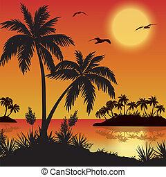 tropische blumen, handflächen, vögel, inseln