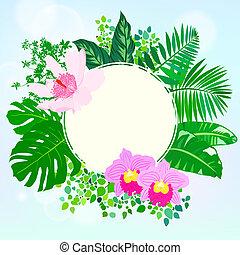 tropische , decor, communie, ronde, kaart