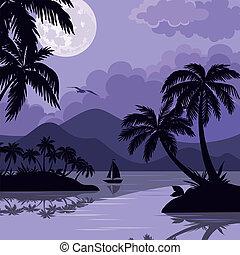 tropische , handfläche, landschaftsbild, meer, mond