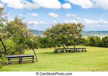 tropische , helling, picknick, banken