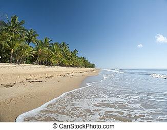 tropische , idyllisch, strand, missie, ontsnapping