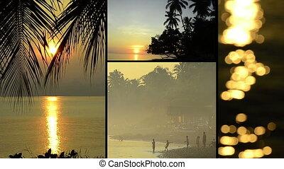 tropische , indrukken, azie