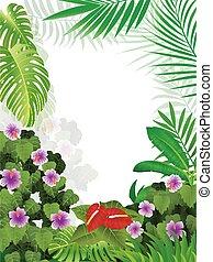 tropische , jungle, achtergrond