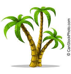 tropische , palmen, freigestellt, weiß