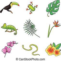 tropische , planten, dieren, pictogram