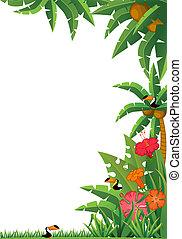 tropische , planten, en, parrots.