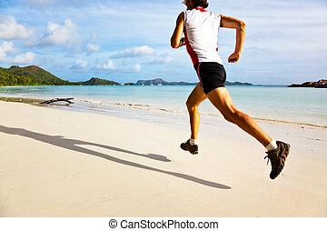 tropische , rennende , strand, man