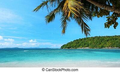 tropische, sandstrand, friedlich