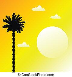 tropische , sonnenuntergang